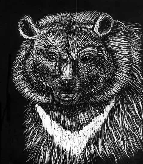 Corvs Art Animals Bear